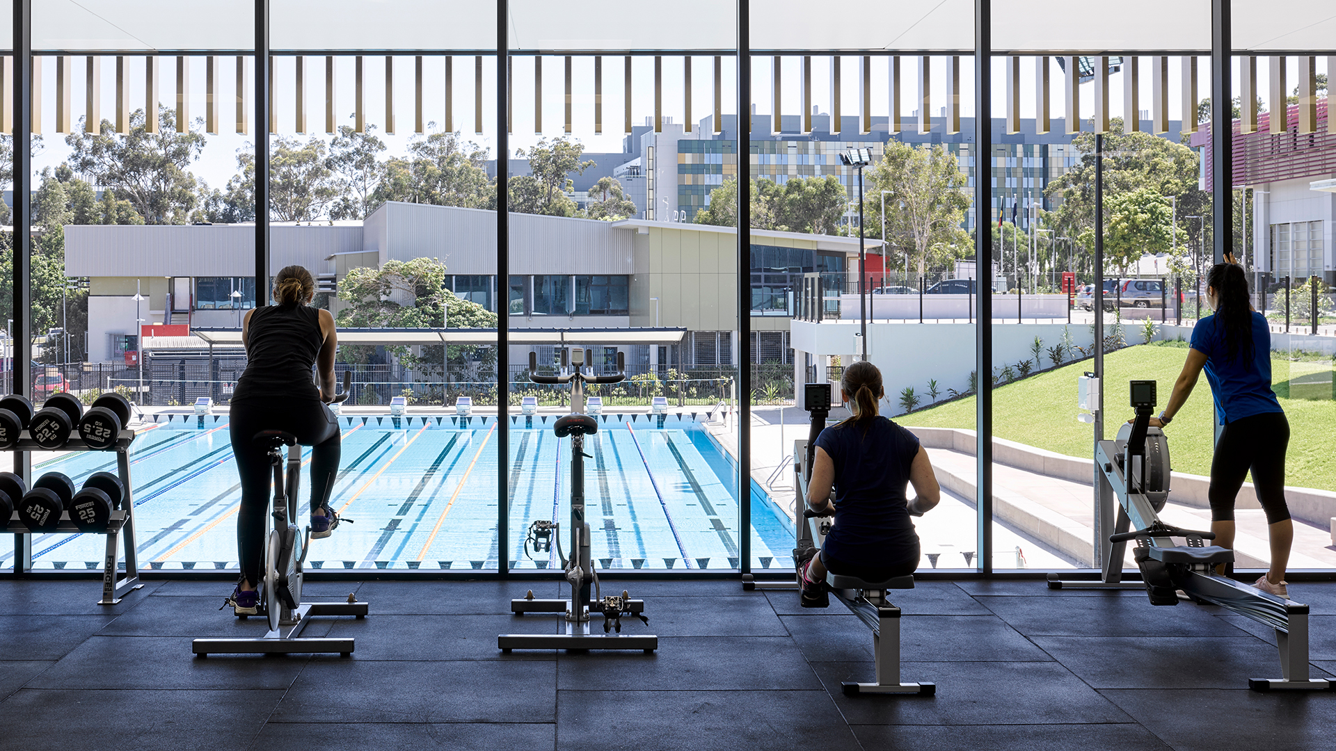 Griffith University GYM